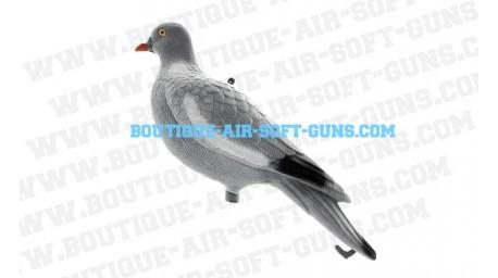 Cible appelant pigeon