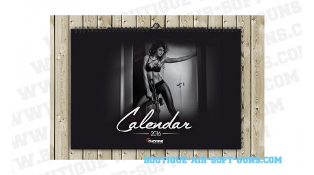 Calendrier Armed Girls 2016